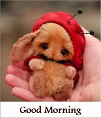 good morning teddy bear images with es