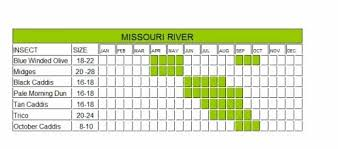 Pere Marquette River Hatch Chart Tricos Archives Wolf Creek Angler