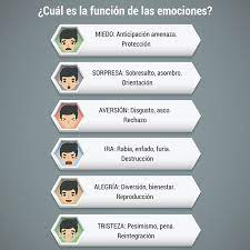 Las Emociones Definición Tipos Y Expresiones Faciales