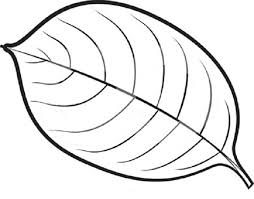 Small Picture Leaves Coloring Pages fablesfromthefriendscom