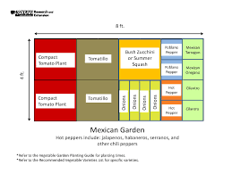 Layout Of Kitchen Garden Garden Templates The Demo Garden Blog