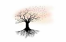 Family Tree Tree Transparent Tree Of Roots Transparent Background Sample