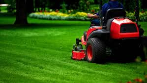 11 Lawn Care Business Plan Templates Pdf Word