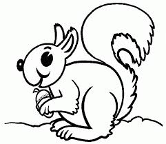 Small Picture Squirrel Coloring Pages Animal Animal Coloring pages of