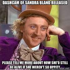 Dashcam of Sandra Bland released Please tell me more about how she ... via Relatably.com