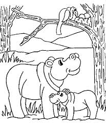 Small Picture Hippo Coloring Pages