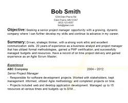 Great Objectives For Resumes First Resume Objective nardellidesign 24