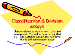 model essay logical division  model essay logical division