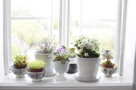 Surprising Deep Window Sill Ideas Images Decoration Ideas ...