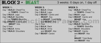 body beast build chest and tris workout sheet yourviewsite co beast chest workout for size sport1stfuture org