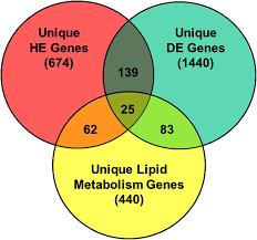 Endothermy Vs Ectothermy Venn Diagram Venn Diagram Illustrating Overlap Among Functional Gene
