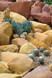 Small Picture Desert Cactus Rock Garden Xeriscaping