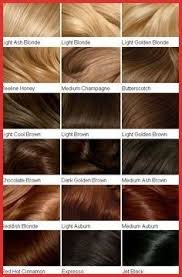 Clairol Soy 4plex Hair Color Chart Hair Color Filler Chart 155034 Clairol Professional Creme
