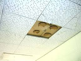 asbestos in ceiling tile old ceiling tiles acoustic ceiling tiles asbestos asbestos ceiling tiles old ceiling asbestos in ceiling tile