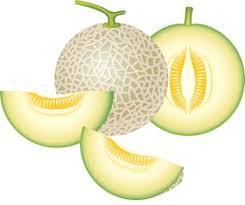 Картинки по запросу melon cartoon