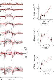 Average Light Intensity Response Dependence On Light Intensity Left Column Of