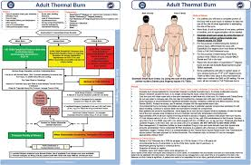 Thermal Burn Care A Review Of Best Practices Ems World