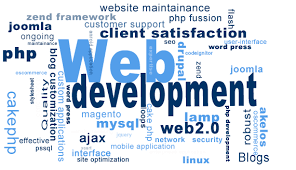 Image result for web & software development provider