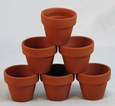 Cheap Flower Pots Wealthycircle Club Regarding Idea 11