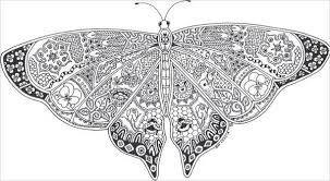 Small Picture 9 Butterfly Coloring Pages Free Premium Templates