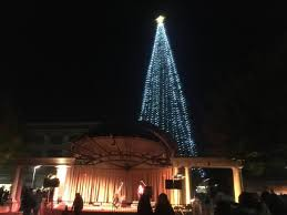 Chico Christmas Tree Lighting Christmas Tree Lighting To Be Celebrated In Downtown Chico