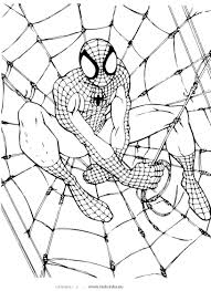 spiderman to color. Beautiful Color Coloring Page Spiderman To Color N