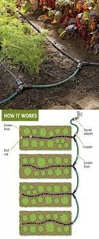garden water sprinkler drawing