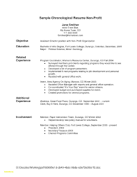 Sample Of Resume Template New Waitress Responsibilities Resume Samples Waitress 12