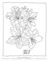 flower coloring sheets lily coloring page 5 flower coloring sheets a z,free printable flower coloring pages on printable address book pages