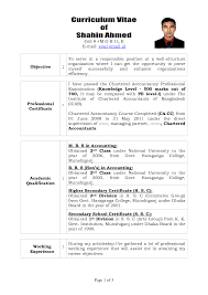 Resume Of Chartered Accountant India Awesome Sample Resume For