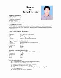 how to make bio data format business plan how to make biodata for marriage bio data format award