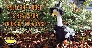 photo of gift baskets halifax ns canada sully the goose will