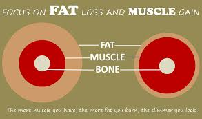 weight lifting to lose weight by increasing muscle