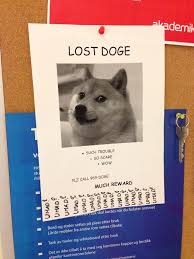 lost doge. Plain Doge Lost Doge Found At Campus Today Dun Abuse Poor Doge For Doge