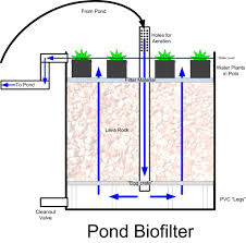homemade water filter diagram. Inspiration Homemade Water Filter Diagram