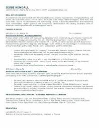 Commercial Real Estate Appraiser Sample Resume Real Estate Resume Templates Resumes Commercial Examples Agent 12