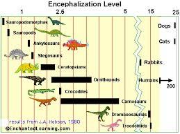 How Smart Were Velociraptors