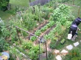 small vegetable garden small vegetable garden plans ideas small vegetable garden ideas