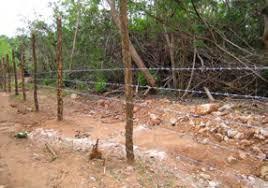 Image result for LK Valikamam North