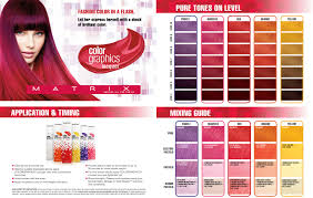 Redken Lacquer Chart Matrix Colorgrahics Lacquer Application Timing In 2019