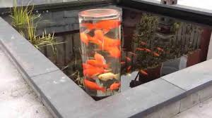 build beautiful above ground pond with simple design 15 more diy ideas
