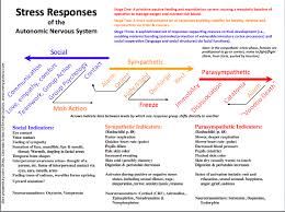 Polyvagal Theory Chart Figure 4 From Polyvagal Theory Introduction For Somatic
