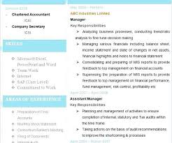 Cpa Resume Template Resume Examples Accounting Resume Examples For