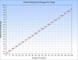 Metacam For Dogs Veterinary Place