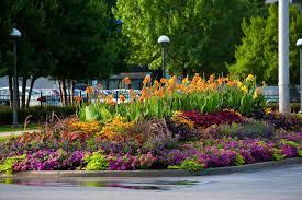 Small Picture Pre Designed Perennial Gardens Garden ideas and garden design