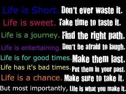 Life's Too Short Quotes Adorable Most Importantly Life Is What You Make It Inspirational