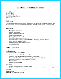 Government Job Resume template Issue Resolution Template Examples For Government Jobs 84