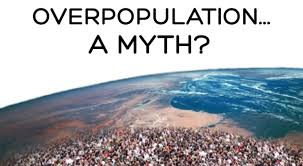 overpopulation causes poverty essay papers   essay for you  overpopulation causes poverty essay papers   image