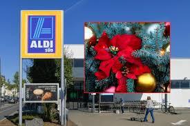 Aldi Süd Verkauft Winterstern Statt Weihnachtsstern
