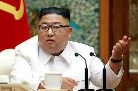 Corea del Nord • Kim Jong-un • Cane | Notizie dal Mondo